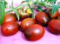 Линия томатов Де Барао