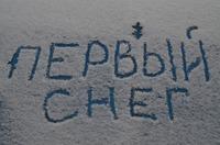 Шел первый снег.