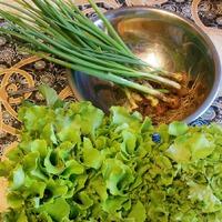 Любоффь моя, салат. Кочанный, листовой...
