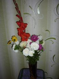 Вот такие у меня дачные цветы.
