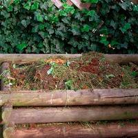 Компост и другие удобрения осенью