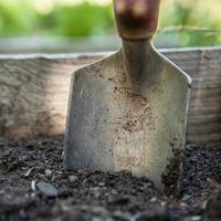 Осенние заботы садовода