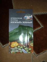 Армянский огурец. Богатырь зелёный.