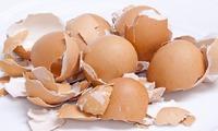 Несколько минут - и удобрение из яичной скорлупы готово