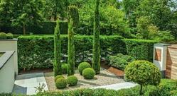 Гравийный сад: чем хорош и как подобрать растения?