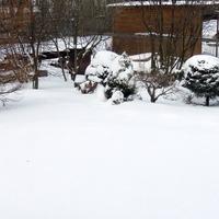 Мои милые гости и... здравствуй зима!