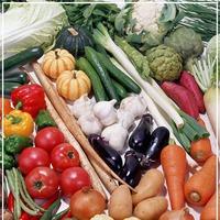 Овощи и нитраты