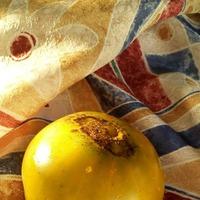 Зеленые томаты. Изумрудное яблоко и Малахитовая шкатулка