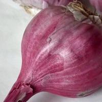 Розовый чеснок.