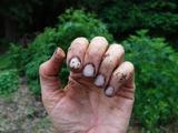 Как отмыть руки от въевшейся грязи после огорода