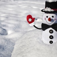 10 удивительных фактов о снеговиках