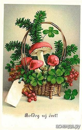 Грибы старинные открытки