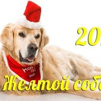 С наступающим Новым Годом, дорогие друзья!!!