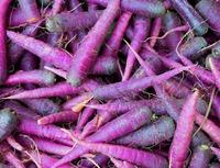 Удивительна фиолетовая морковь