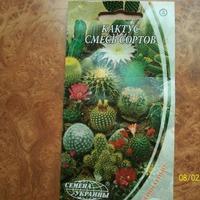 Мой опыт по выращиванию кактусов