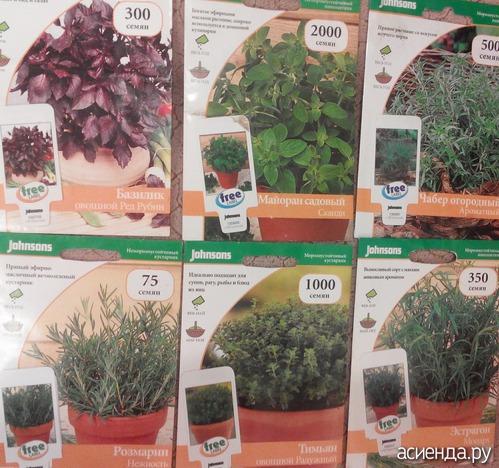 Каталог пряных растений по алфавиту с картинками