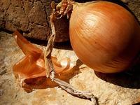 Способы применения луковой шелухи