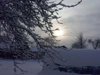 Вот и пришла зима..