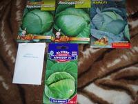 Моя первая закупка семян