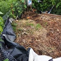 Как мы утилизируем органические отходы!