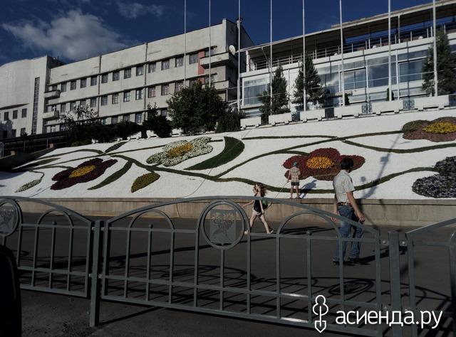 Харьковские картины из цветов....