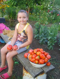 Приходите к нам на помидоры!