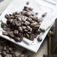 Марагоджип - непредсказуемый кофе-мутант