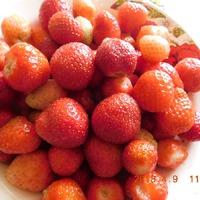Пора собирать ягоды)))