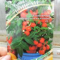 Томаты для домашнего огорода)))