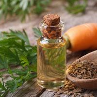 10 преимуществ эфирного масла из семян моркови