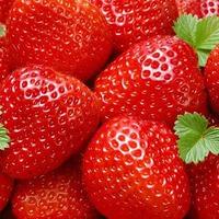 Советы для хорошего урожая клубники
