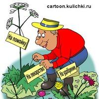 Посмеёмся над собой)))