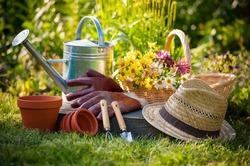 Полезные подсказки садоводам-новичкам