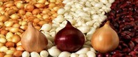 Когда сажать лук севок?