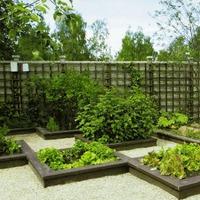 Советы по планированию сада