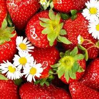 Идеи для здорового питания на пикнике