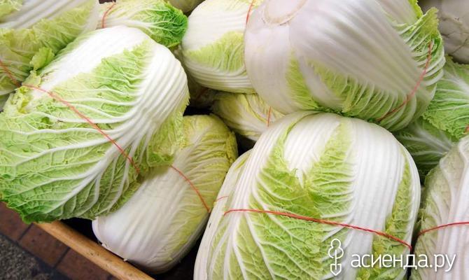 Как вырастить пекинскую капусту на даче