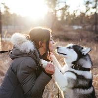 Почему собаки делают нас счастливыми?