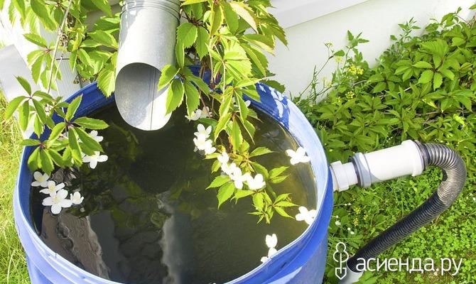 Как сэкономить воду при поливах?