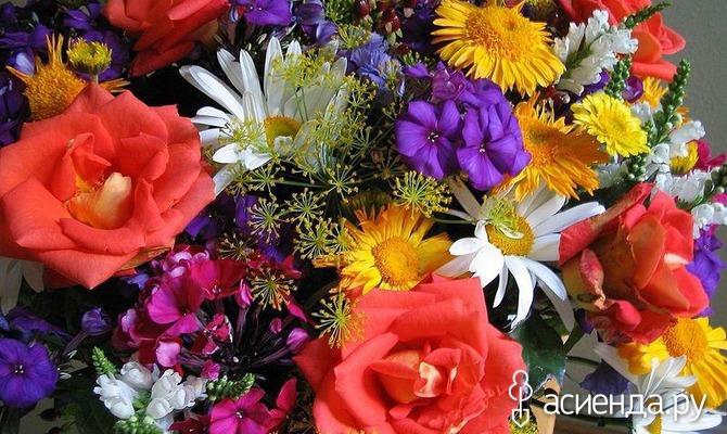 Как дольше сохранить срезанные цветы?