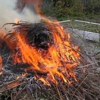 Как на даче правильно сжигать мусор