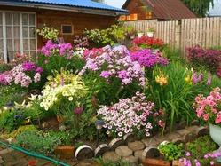 Тенденции садового дизайна
