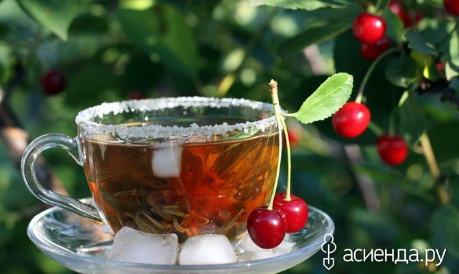 Чай из сада: польза и здоровье
