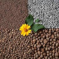 Керамзит в садоводстве и дизайне