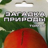 Помидорные фавориты этого сезона)))