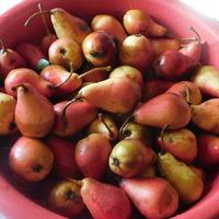Груши и яблоки в сиропе