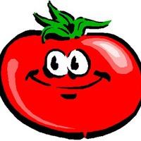 3 причины, почему помидоры вырастают с белыми прожилками внутри.
