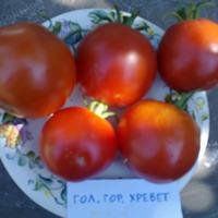 Снова про томаты.\часть 3\