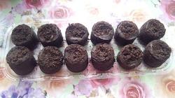 Посев на рассаду в торфяные таблетки