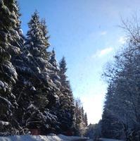 Зимняя сказка на даче